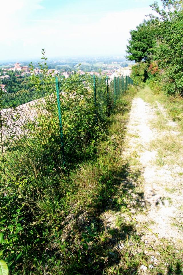 1/9/2002 - Sentiero per arrivare alla cappella di San Bernardo