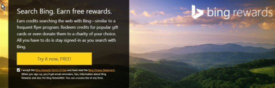 Bing Awards