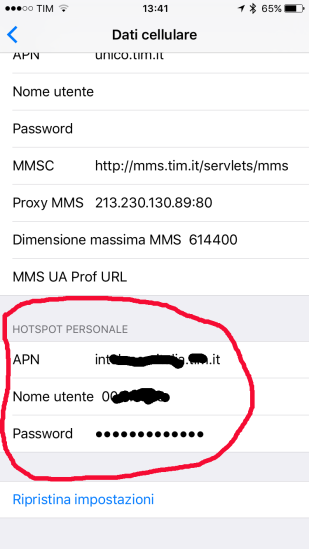 iOS from vers. 9 has the Personal Hotspot section