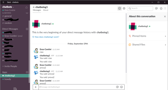 Bot connected to the Slack channel