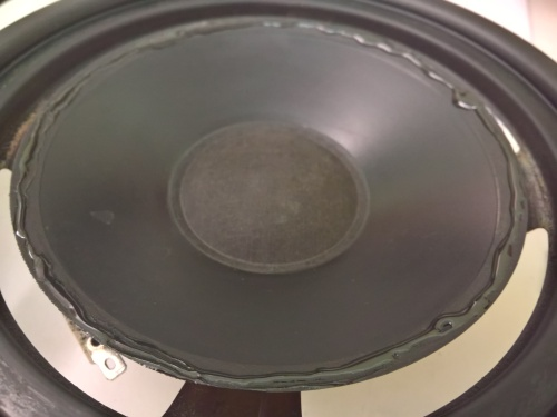 Distribute the glue on the external edge of the speaker cone (1)